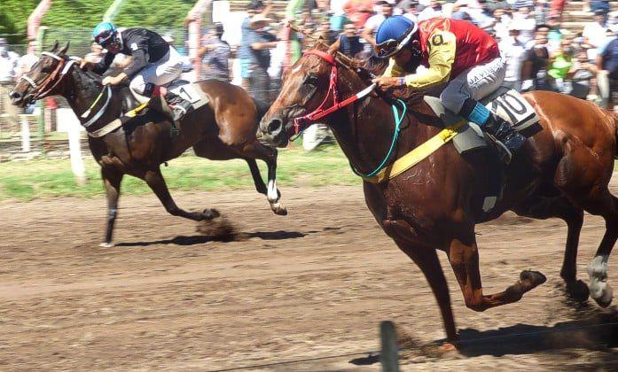 """Turf: """"Moralito"""" y """"Perla Negra"""", los caballos tornquistenses destacados en Macachín"""