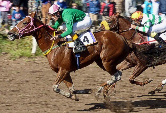 Turf: Segundo puesto para un caballo de Tornquist en Macachín