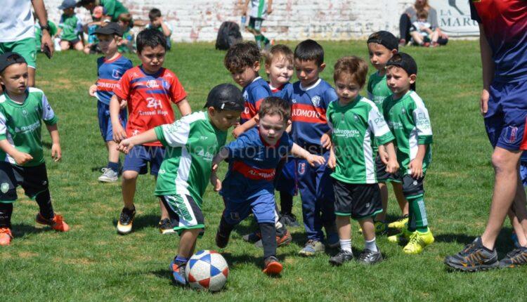 Fue todo un éxito la edición 25º del encuentro regional de escuelas de fútbol de Automoto (252 fotos)